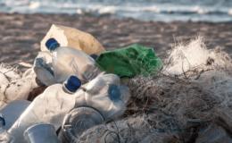 Mare inquinato e spiaggia sporca? Il risarcimento spetta al tour operator